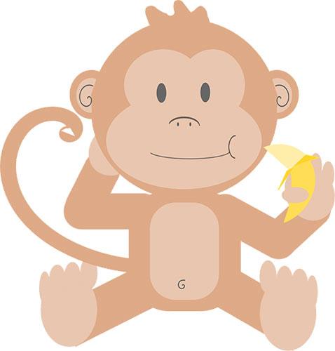 Pet de singe - Fragrance cosmétique et parfum bougie