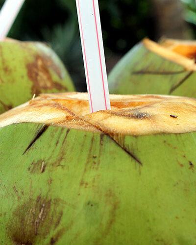 Cocktail tropical - Parfum bougie et fragrance cosmétique